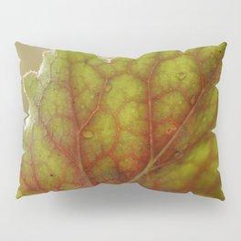 Macro Of A Heuchera Leaf Pillow Sham