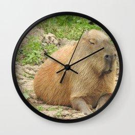 Capybara Wall Clock