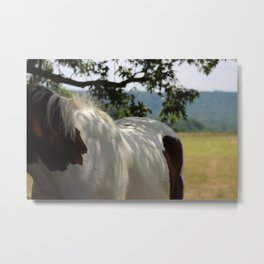 A Shady Patch Metal Print