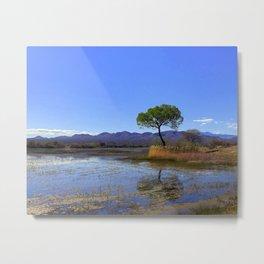 Bosque Redondo Metal Print