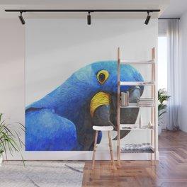 Blue Parrot Portrait Wall Mural