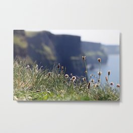 Wild flowers with the Cliffs of Moher in the back Metal Print