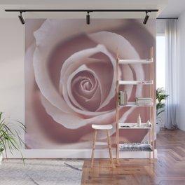 Pink Pastel Rose Wall Mural