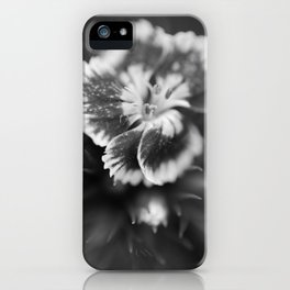 Fade iPhone Case