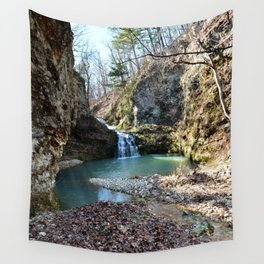 Alone in Secret Hollow with the Caves, Cascades, and Critters, No. 15 of 21 Wall Tapestry