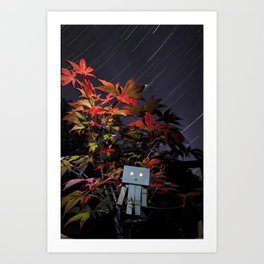 Star Gazing Danbo Art Print