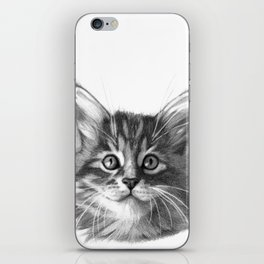 Maine Coon kitten G114 iPhone Skin