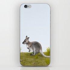 Bennett's wallaby (Macropus rufogriseus) iPhone Skin