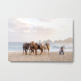 Horses and a horseman Metal Print