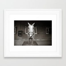 Horsin' around Framed Art Print
