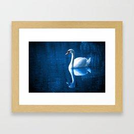 Pretty white swan floating on a blue lake Framed Art Print