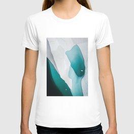 Glacial 2 T-shirt
