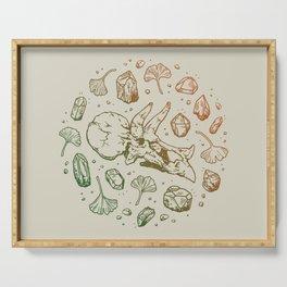 Triceratops Rocks! | Leaf Green & Pumpkin Spice Ombré Serving Tray