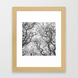 #249 #SleepingTrees Framed Art Print