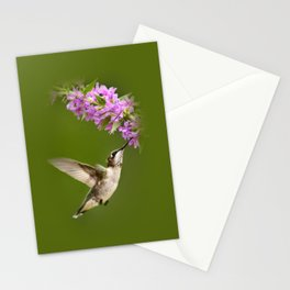 Hummingbird Flying Stationery Cards