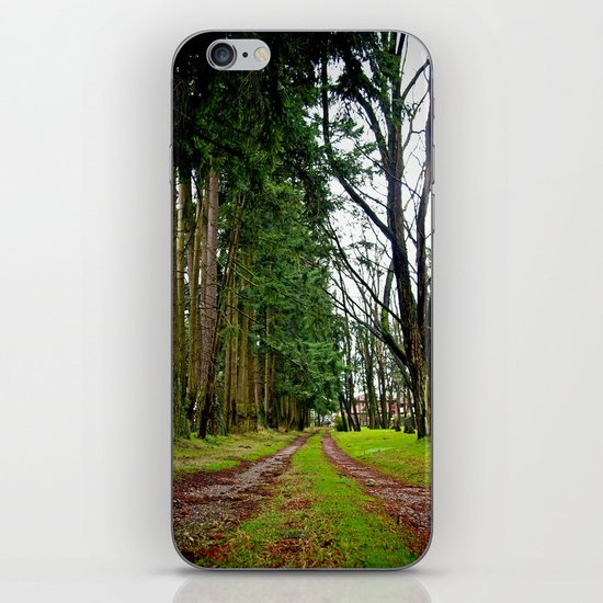The pathway iPhone & iPod Skin