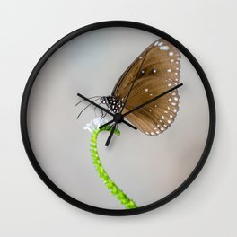 Spotted Black Crow Wall Clock