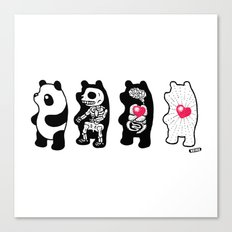 Panda Anatomy Canvas Print