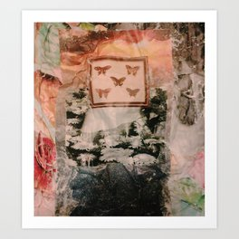 Muddled Daiseys Art Print