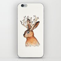 jackalope iPhone & iPod Skins featuring Jackalope by Sandra Dieckmann