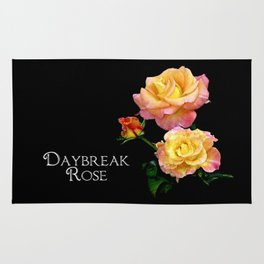 Daybreak roses on black Rug