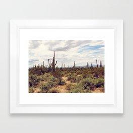 Under Arizona Skies Framed Art Print