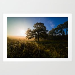 Early Autumn Sunrise Art Print