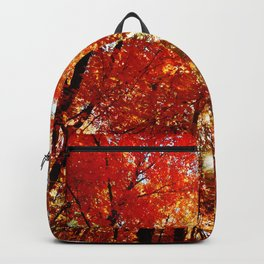 Sun in the Trees Backpack
