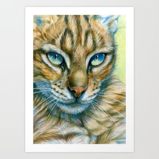Cat's glance CC2013-008 Art Print