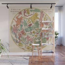 Libra Antique Astrology Zodiac Pictorial Map Wall Mural