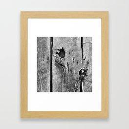 Old House 002 Framed Art Print