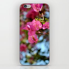 Pink in Nature iPhone Skin