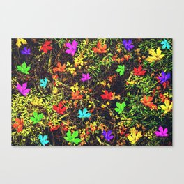 maple leaf in blue red green yellow pink orange with green creepers plants background Canvas Print