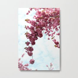 Cherry Blossom (3) Metal Print