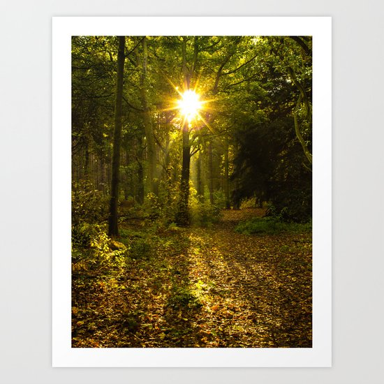 Autumn Sunburst Art Print