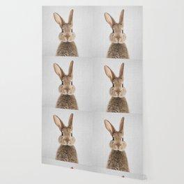 Rabbit - Colorful Wallpaper