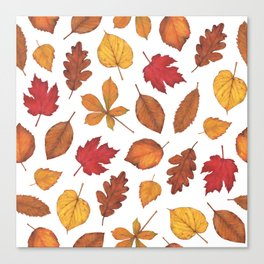 Autumn Leaves Watercolor Pattern | Fall Leaves | Autumn Foliage Design | Canvas Print