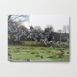 J L's Flock Metal Print