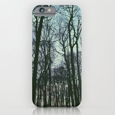 Winter Forest iPhone 6s Slim Case