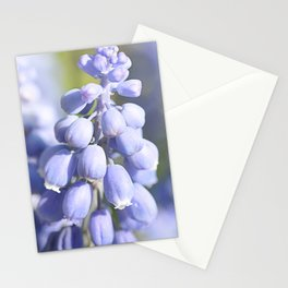 No Winter Lasts Forever Stationery Cards