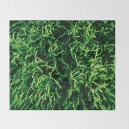 Botanical Gardens Evergreen #939 Throw Blanket