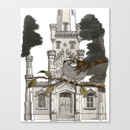 White-throated Sparrow at Old Water Tower Canvas Print