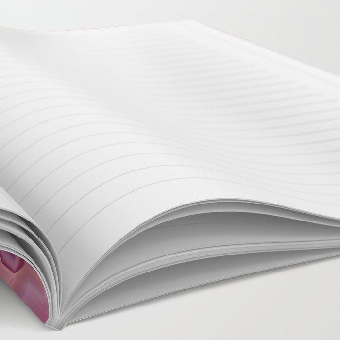 Phoebe Notebook