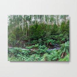Mt Donna Buang, Warburton, Victoria Metal Print