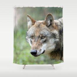 Wolf_20171201_by_JAMFoto Shower Curtain