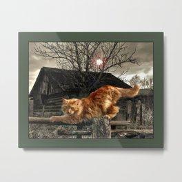 Red Farm Cat Metal Print