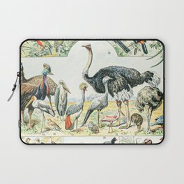Exotic Birds // Oiseaux II by Adolphe Millot XL 19th Century Science Textbook Diagram Artwork Laptop Sleeve