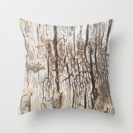 Beyond Cracks Throw Pillow