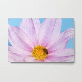 Bright, Beautiful Pollination    Metal Print