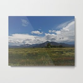 Peace in New Mexico Metal Print